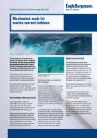 Solution: Mechanical seals for marine current turbines